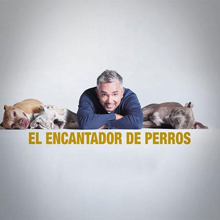 El Encantador de Perros - Promocional para TV