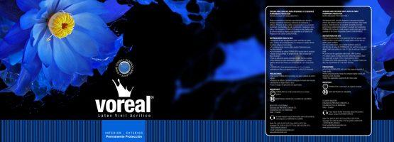 Pintulac - Etiqueta y Logotipo Azul